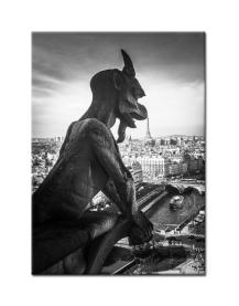 Gargoyle Parisien ©RaquelMarie